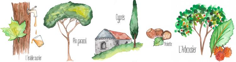 La santé par les arbres Bruno Miniet